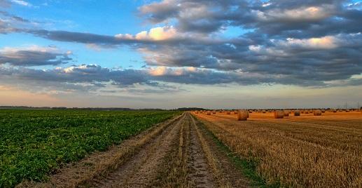 Orná půda v ČR stále zdražuje